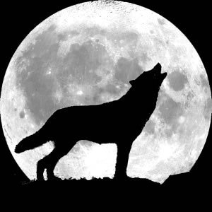 The Howl of Wolves